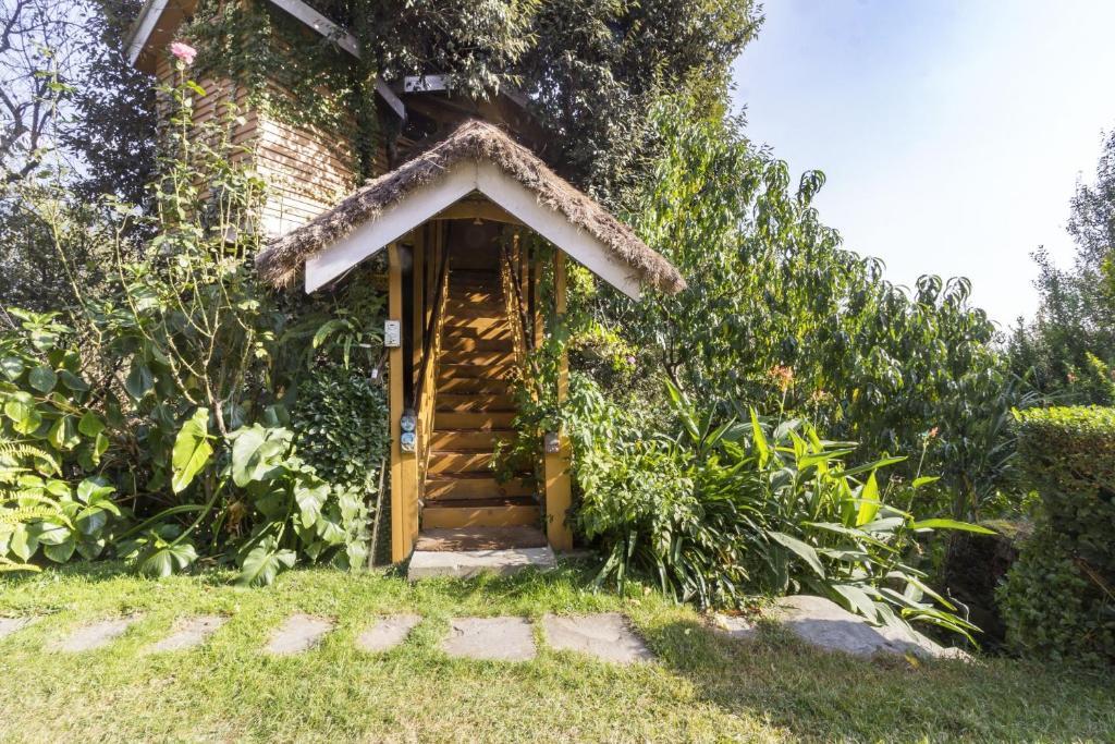 1-br Tree House In Katrain, Manali, By Guesthouser 1238 in Katrain Manali