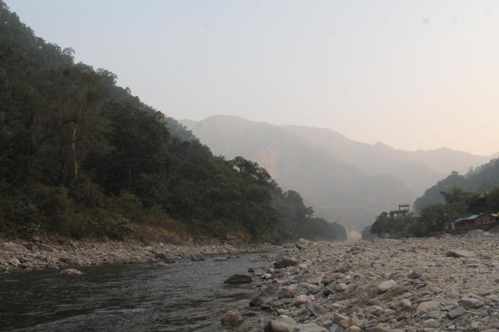 River Side Camp In Rishikesh in Rishikesh