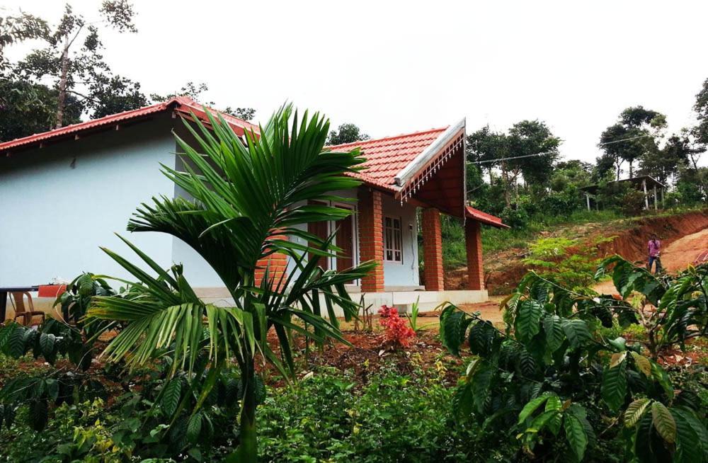 Forest Homestay - Gawdahalli in Hanbal