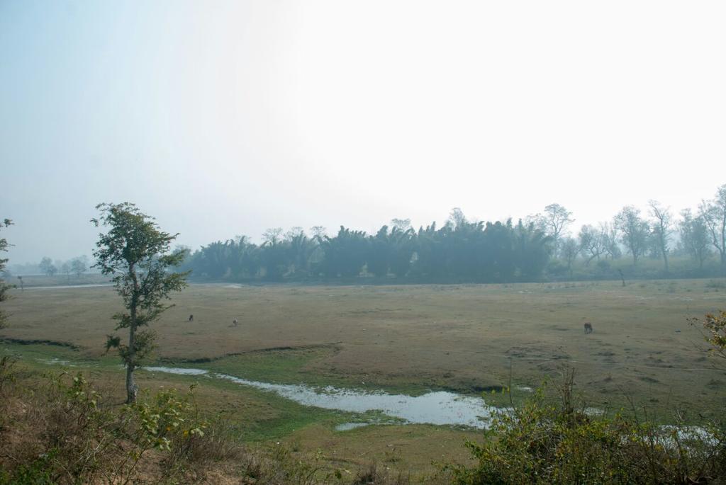 Rishivashyam in Rishikesh