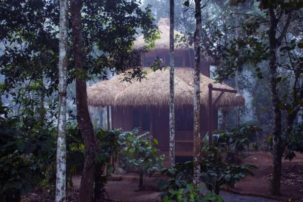 Wayanad Coffee Mist Resort in Meenangadi