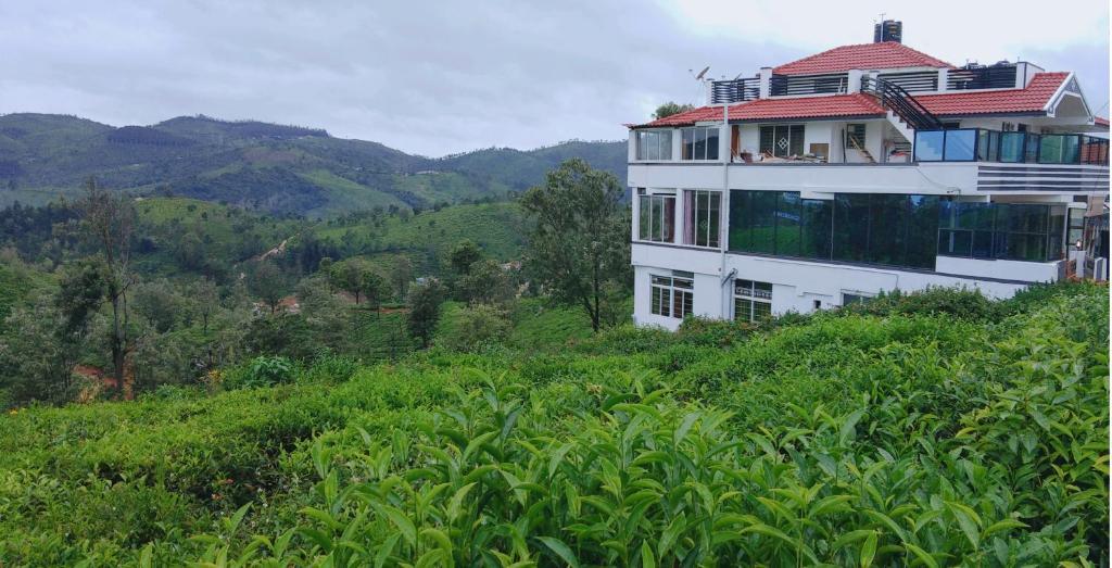 Great Windows Resorts in Coonoor