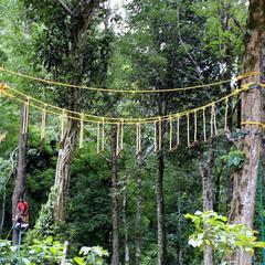 Dare 5000 Nature Campz in Wayanad
