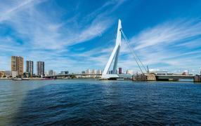 London to Rotterdam flights