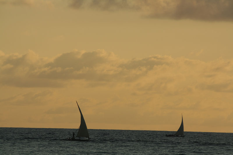 Dar es Salaam to Zanzibar flights